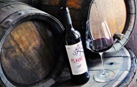 Radovanovic Wine cellar